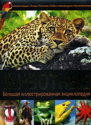 Животные. Большая иллюстрированная энциклопедия.