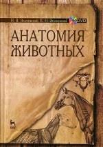 Анатомия животных: Учебное пособие. + DVD. Зеленевский Н.В., Зеленевский